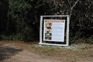 Reserva Eco Recreo del Sol (31)